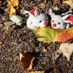 """Autumn Mice"" by Albertphoto"