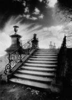 Steps, Chateau Vieux, Paris (b/w photo)