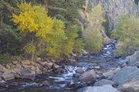 South St Vrain Creek Autumn View Colorado