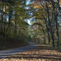 The long and winding road Art Prints & Posters by Larry Wohlheter