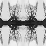 """tree_art_allowthedivinehelp_print"" by milatovar"