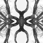 """tree_art_somethingbiggerinmind_print"" by milatovar"