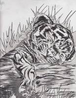 cute baby tiger pencils