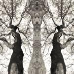 """tree_art_theeyesoftruth_print"" by milatovar"