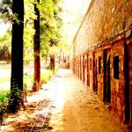 """""""A walk down the history"""" by namit"""