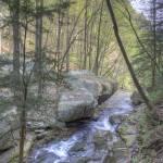 """Quiet Stream"" by david-troxel"
