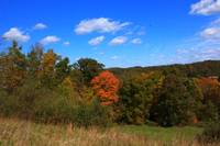 WV Autumn (2)