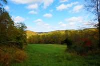WV Autumn (6)