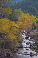 Autumn Canyon Colorado Scenic View