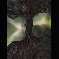 Corporeal Roots Art Prints & Posters by Michael Slatky