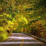 """Autumn Road"" by Groecar"