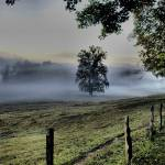 """Cades Cove Morning 2"" by BILLIUM"