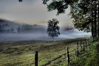 Cades Cove Morning 2