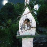 Summer Night with Birdhouse