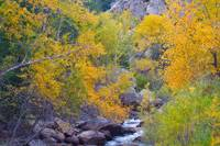 Colorado Rocky Mountain Autumn Canyon View