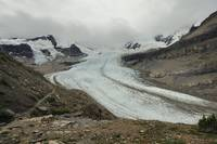 Glacier of Robson Mt