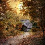 """""""Twilight Trail"""" by JessicaJenney"""