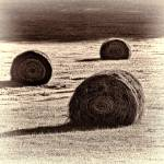 """Haybales in the Field"" by boppintheblues"