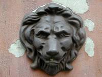 Urban Safari: Lion Head
