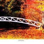 """Somesville, Mt Desert, Maine  Fall foot bridge"" by TomJelen"