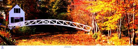 Somesville, Mt Desert, Maine  Fall foot bridge