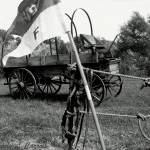 """Buffalo Soldiers Wagon and Standard"" by TealWingPhotography"