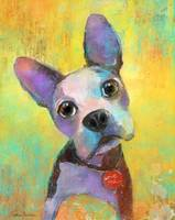 Cute Boston Terrier Puppy art