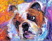 Cute American English bulldog print