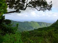 Manoa Valley, Hawaii