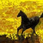 """""""Black Stallion XL"""" by artbyshesh"""