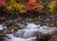 Autumn River 2