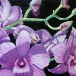 """""""My Old Orchid"""" by DMannionPaintings"""