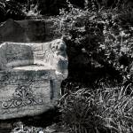 """STONE CHAIR"" by tmckinleyphotography"