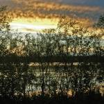 """Sundown Over Lake  Wingra"" by donjo"