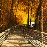 Bridge Through Tranquility Art Prints & Posters by Patty Baker