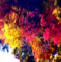 Reflected Change of Seasons