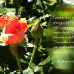 """Rose&Bud*Psalm145:3&4"" by DreamingIsaac"