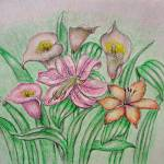 """Calla and Lilies"" by thuraya"