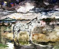 Appaloosa Spirit Horse Contemporary Art