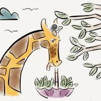 Cecilia the giraffe Art Prints & Posters by Paul Dunford