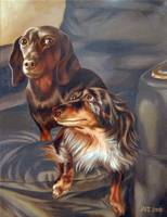 Portrait of Schatzi and Smokey