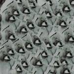 """Eyes"" by designmia"