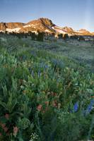 Carson Pass at Sunrise
