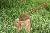 Antique Broad Axe in a Stump of Wood
