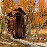 """Outhouse In The Aspens"" by jameseddy"