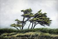 Wind Whipped - Hans Breuer - 24x36