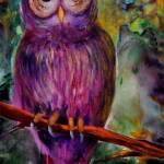 """Curious Owl"" by AmyElizabethArt"