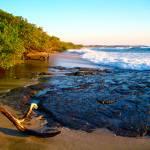 """""Costa Rica Beach"""" by AlexandraZloto"