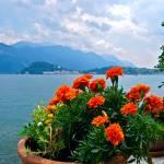 """""""""""Lake Como"""