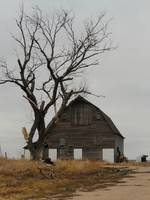 Old Barn Still Standing